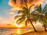 Green list travel: Barbados is back. and it's better than ever!