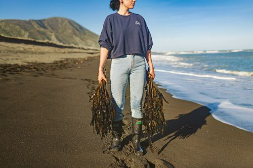 Small footprint, big impact: Why the couple behind Tora Collective catch their crayfish and pāua to order