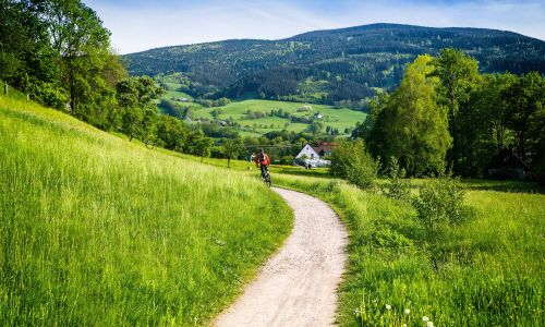 Cycling in the Black Forest: Everything you need to know