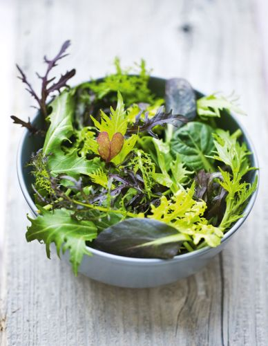 Mastering the art of the homegrown salad bowl: From optimal picking times to dressing it up