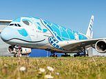 ANA takes delivery of its very first Airbus A380, which has a smiley sea turtle livery