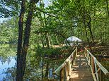 Relax and let nature unwind you at Into The Woods