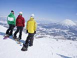 Ski holidays: Japan's thrilling Niseko resort gets more snow than almost anywhere else in the world