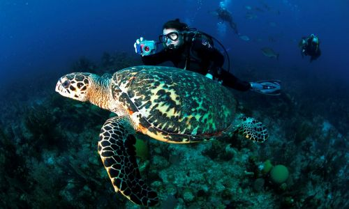 7 amazing active adventures in Belize, beyond the beach