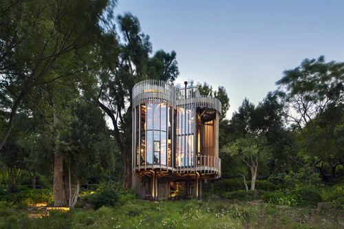 Malan Vorster Architecture Crafts an Award-Winning Treehouse in Cape Town, South Africa