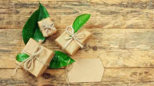 17 Eco-Friendly Gifts For Your Friend Who Only Buys All Natural