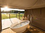 Ten incredible luxury glamping sites in the UK for family reunions this summer