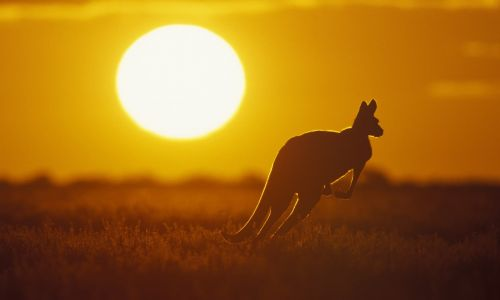 Outback adventure: 7 trips that take you deep into Australia's red heart
