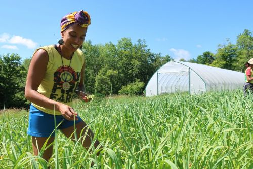 Returning to our roots: Black Americans are redefining relationship to the land with gardening, farming