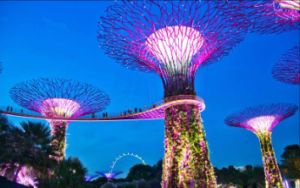 Singapore Forges Ahead with Investment in Bold Innovations