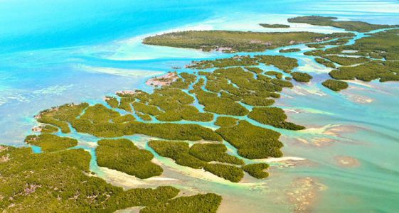 6 Reasons We Can't Wait to ComeBacktoTravel to the Florida Keys