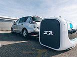 Travellers at Gatwick airport will have their cars parked by ROBOTS