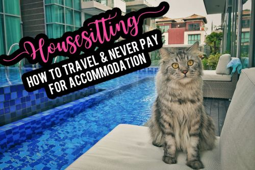 How to Become a House Sitter, Travel the World, and Never Pay for Accommodation