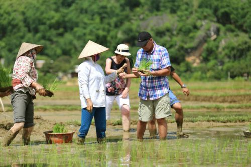 5 ideas of agricultural tours in Vietnam