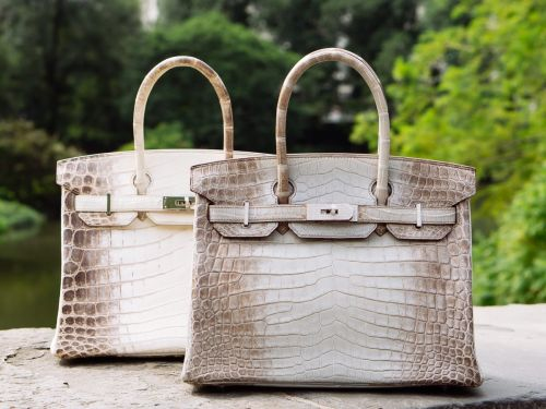 Breaking the $500,000 Mark: A Look at an Extremely Rare Hermès Gris Cendre Diamond Himalaya Birkin