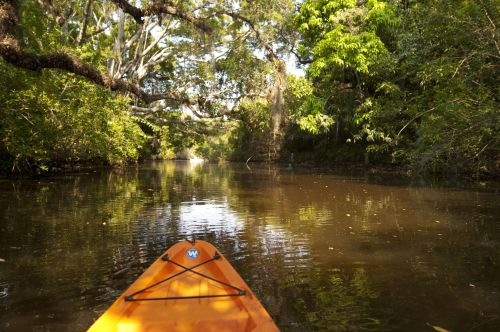The beaches of Fort Myers & Sanibel: Your full travel guide