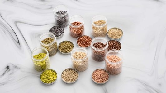 Go meat-free: A beginner's guide to plant-based protein sources