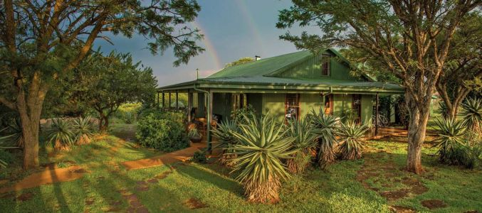 Three Tree Hill Lodge in KwaZulu-Natal, South Africa