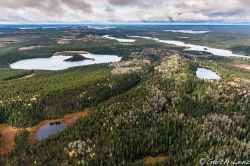 Indigenous Protected and Conserved Areas and Climate Change in Canada's Boreal Forest