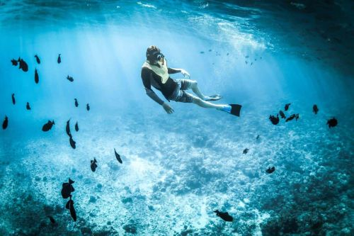 Best Cave Diving Trip? Plan Safely With a Navy SEAL