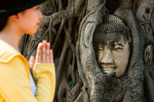 8 thought-provoking photos of Buddhist sites