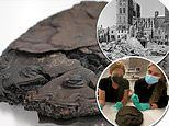 'Heavily charred and blackened' nut cake baked during World War II found preserved in German town