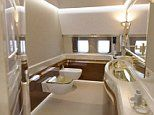 Astonishing pictures reveal the opulent interior of Vladamir Putin's luxury private jet
