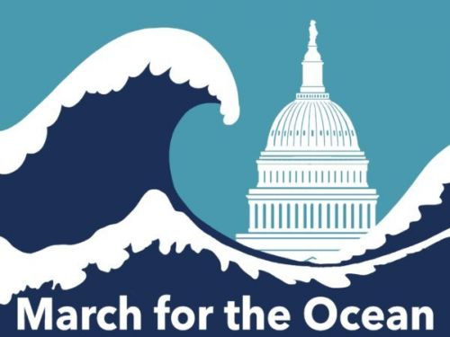 We Will March for the Ocean!